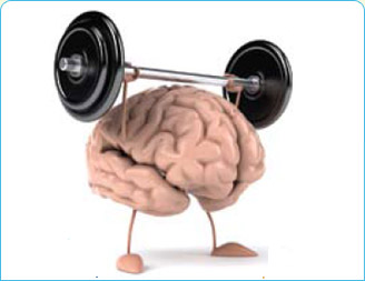 cerebro musculando